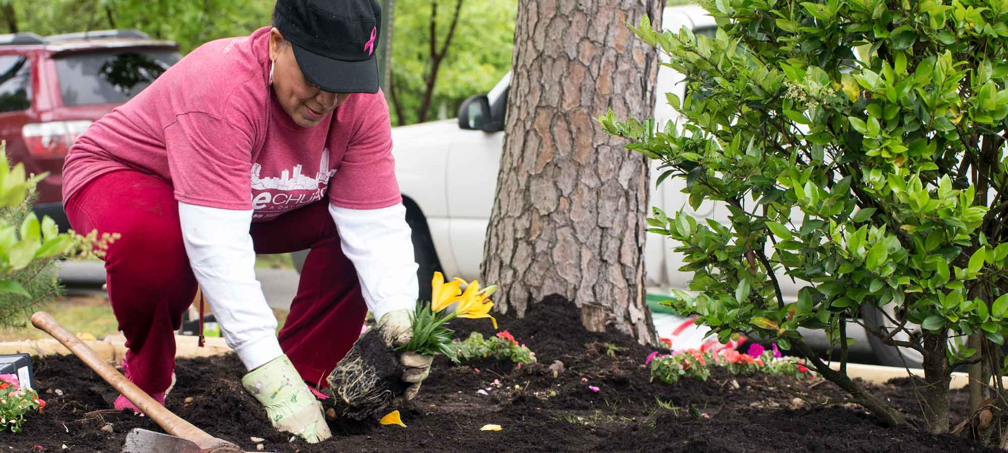 Woman planting flowers in landscaping area