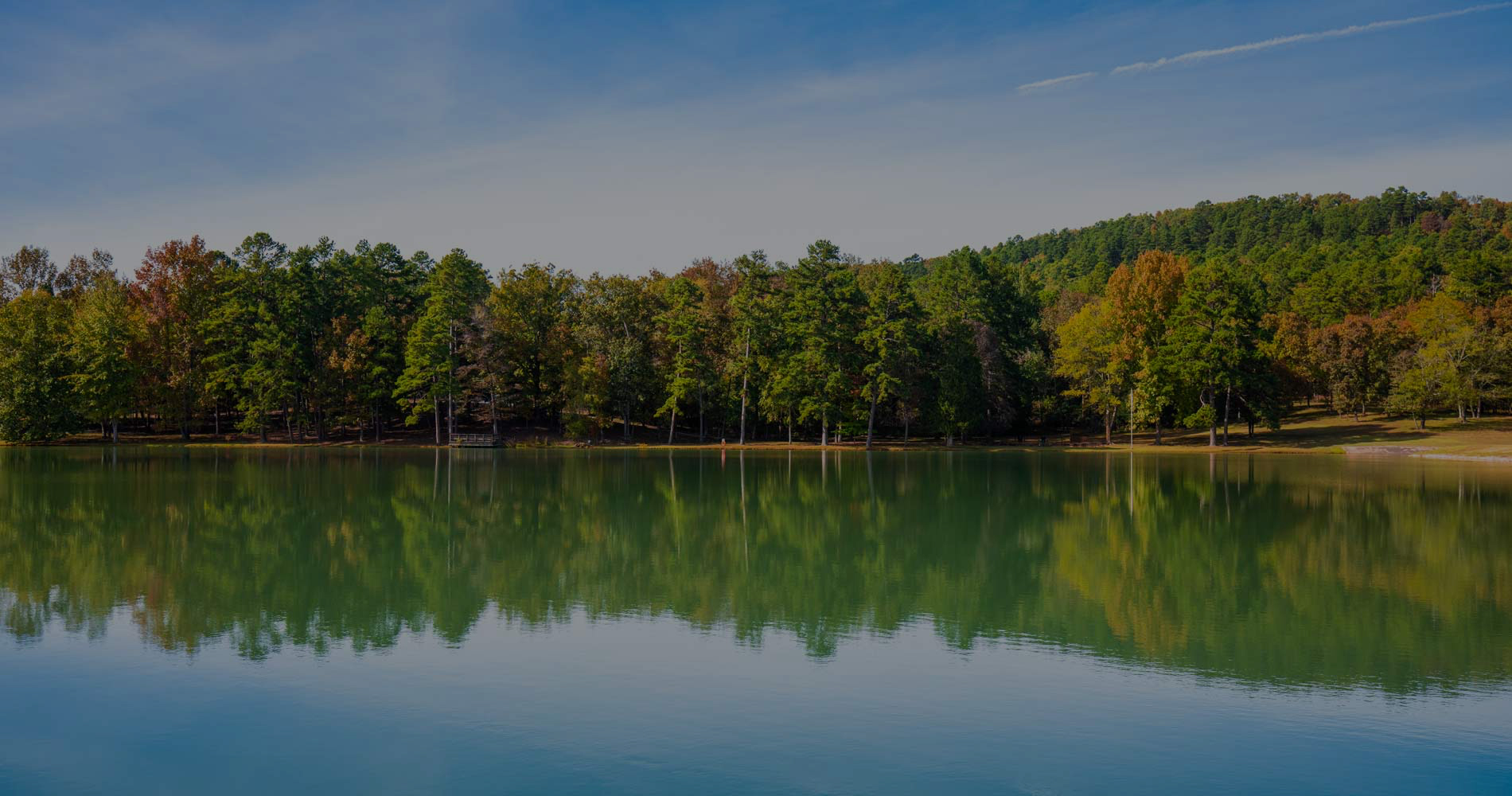 lake, forest on opposite shore, reflection in water